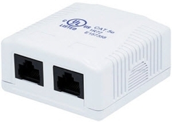 Picture of RJ45 Dual Surface Mount Box Cat5e